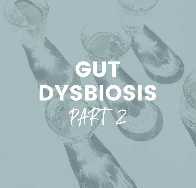 Gut Dysbiosis - Part 2