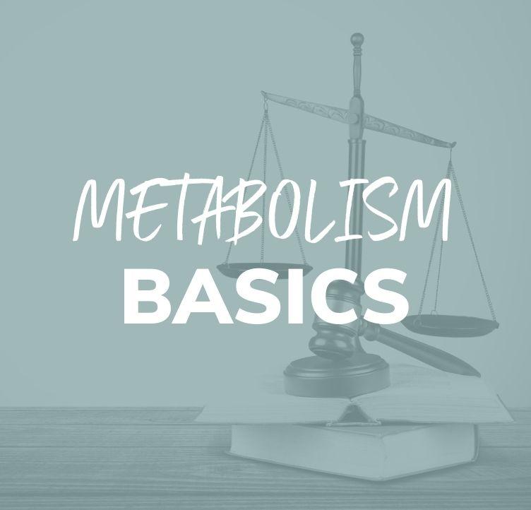 Metabolism Basics